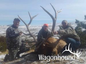 Hunting 2019