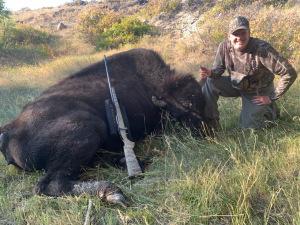 Gordon-Roeder-bison