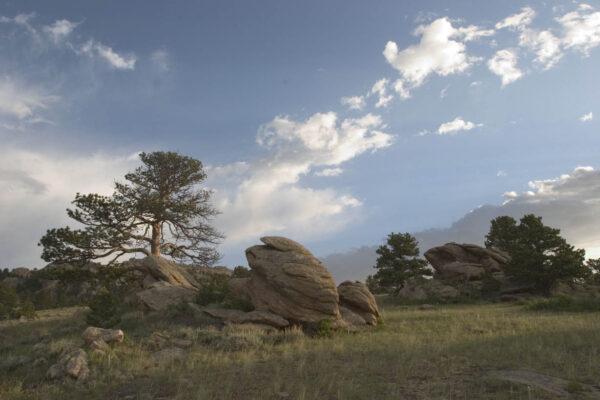 wagonhound-ranch-scenery